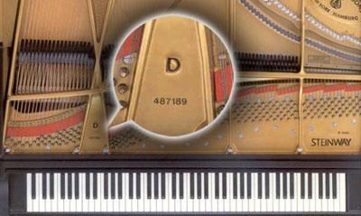 Kiểm tra số seri là cách tốt nhất xác định xuất xứ đàn piano: