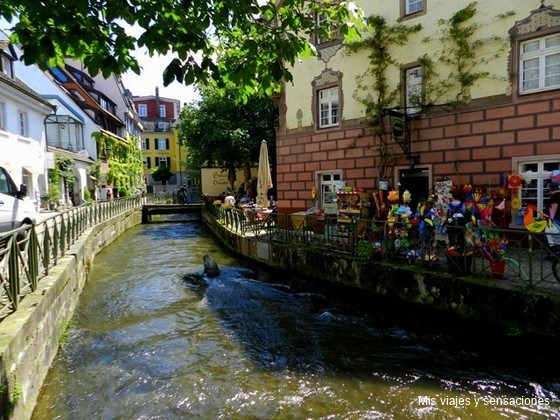 Friburgo, Selva Negra (Alemania)