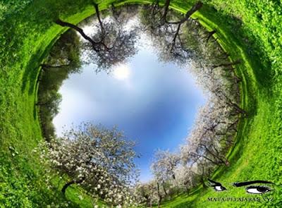 Lingkungan Hidup, Pengertian Lingkungan Hidup