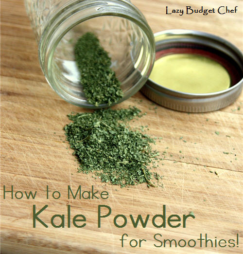 Lazy Budget Chef: How to Preserve Kale the Easy Way: Make ...