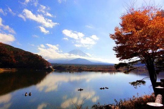 Danau Shoji, Jepang