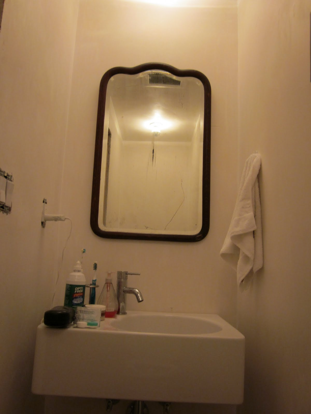 Dog House 12: Mirror, mirror on the wall: aka Half-bath ...
