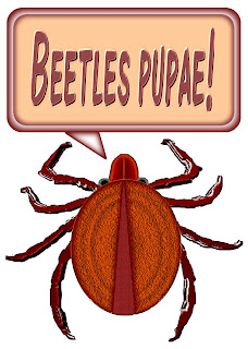 Click image for Beetle item imprinting on T-shirts, mugs, and more!