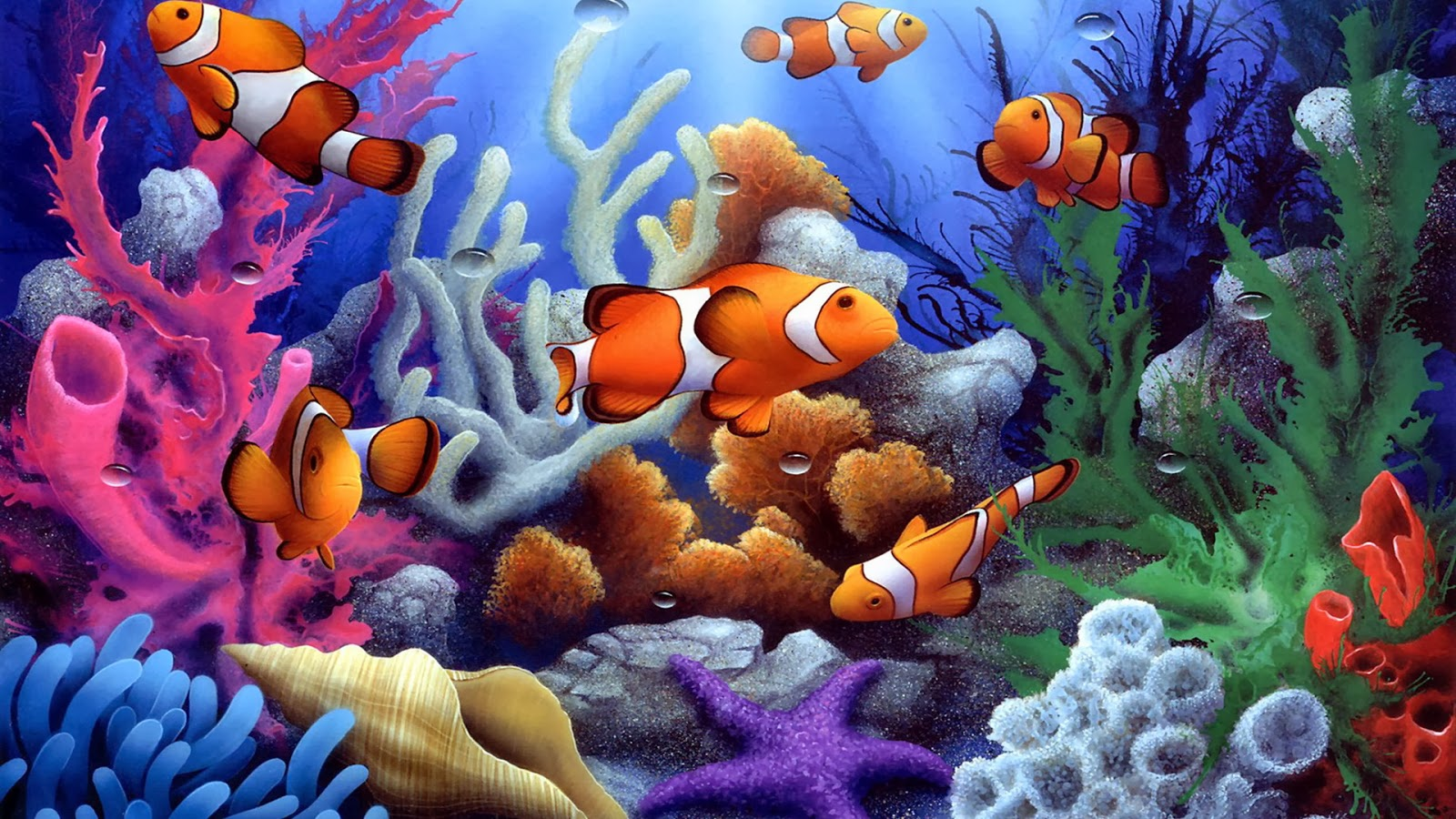 Underwater coral free fish wallpaper - beautiful desktop ...
