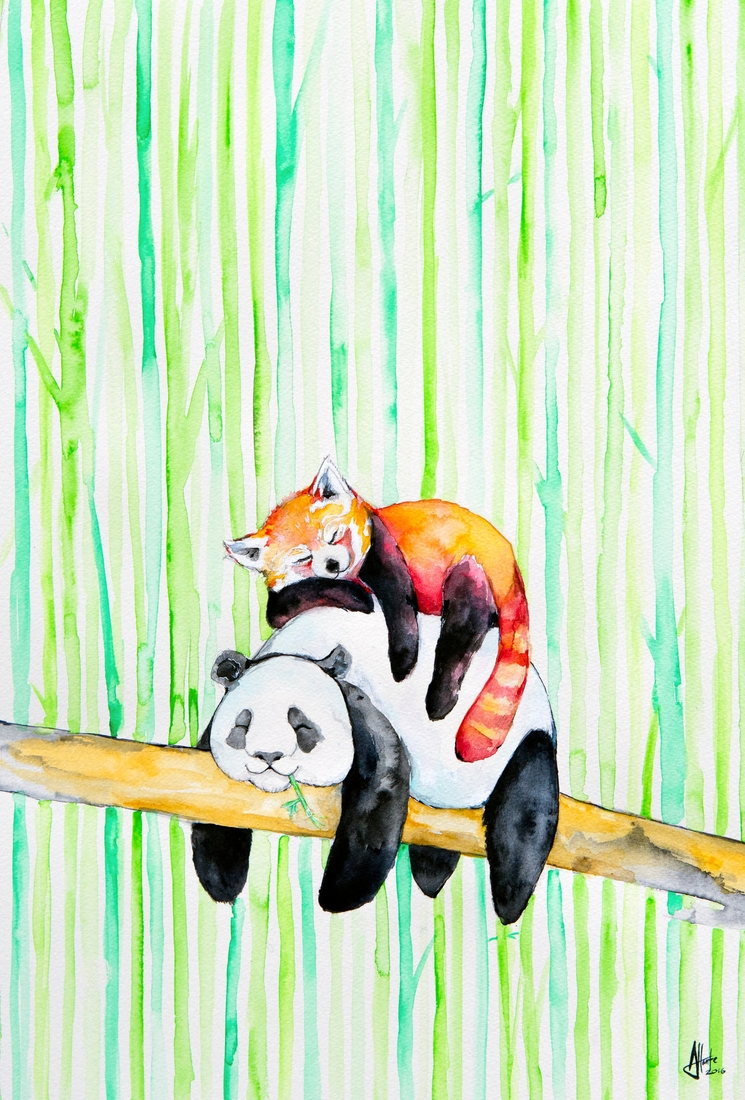 08-Red-and-Black-and-White-Pandas-Marc-Allante-Wild-Animal-Paintings-with-a-Splash-of-Color-www-designstack-co