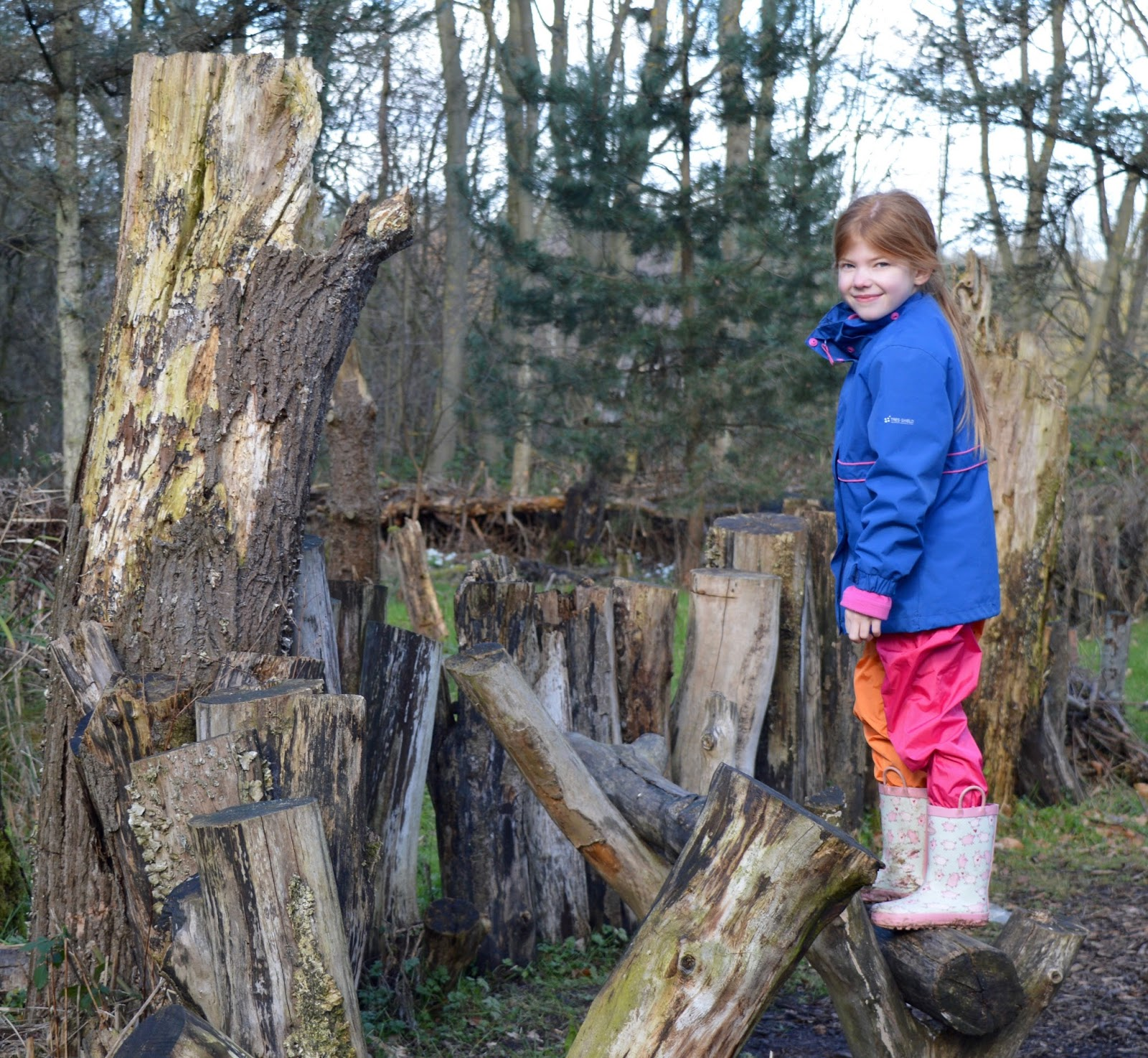 WWT Washington Wetland Centre | An Accessible North East Day Out for the Whole Family - climbing on trees