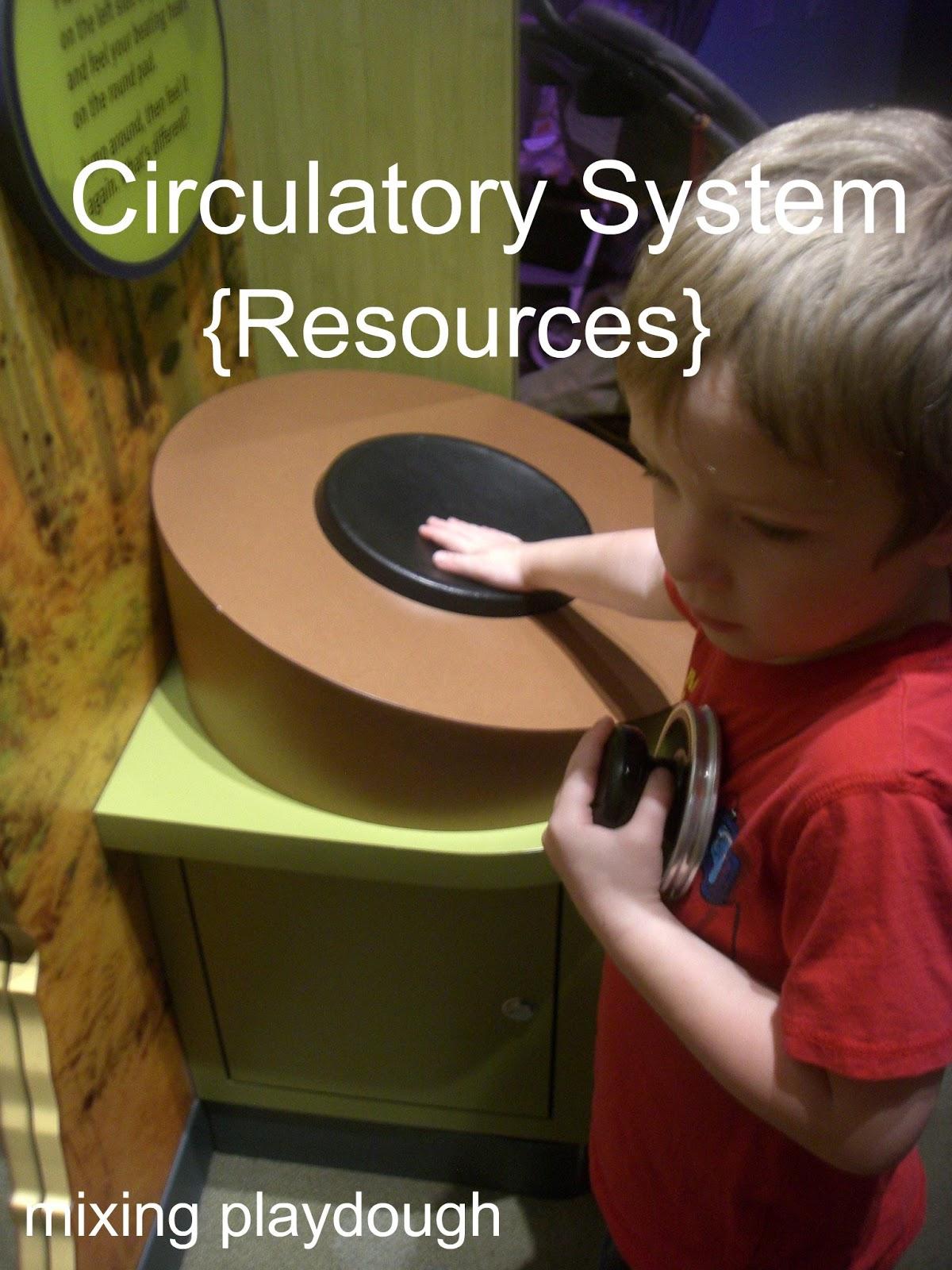 Mixing Playdough Circulatory System Resources Heart