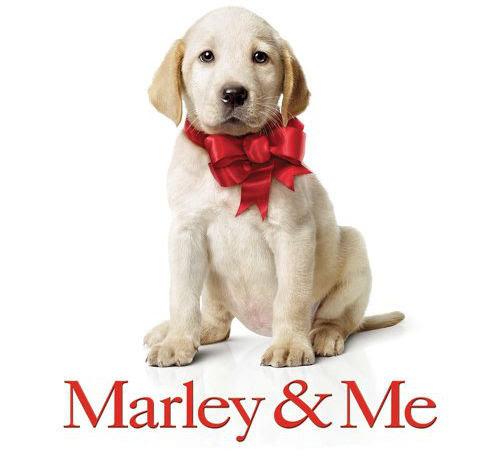マーリー 世界一おバカな犬が教えてくれたこと/マァァァリィィィ(号泣)