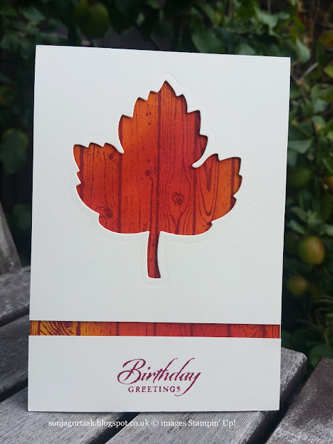 Hardwood Background Stamp and Leaves Framelits