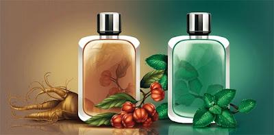 Ilustración con vectores perfumes