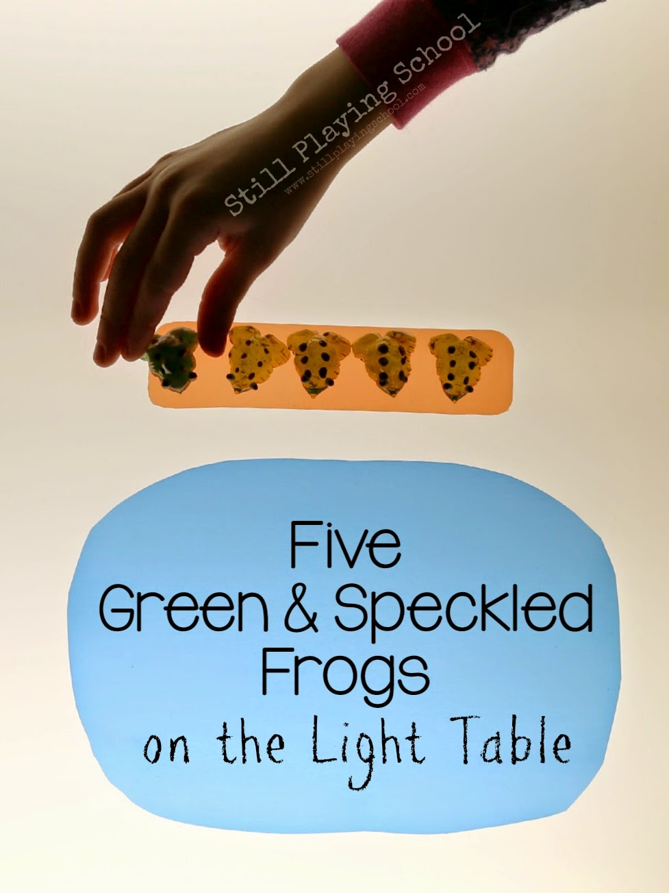 Five Green and Speckled Frogs on the Light Table