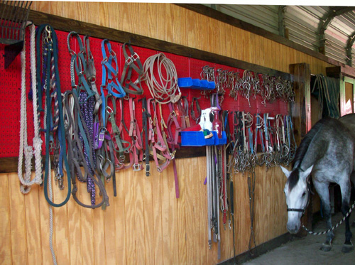 horse bridle storage peg board