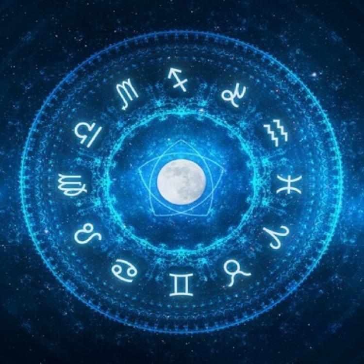 The Birthday Zodiac Signs (366)