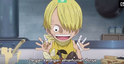 One Piece Episode 804 Subtitle Indonesia