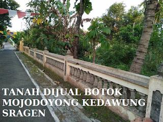 Tanah Dijual Botok Mojodoyong Kedawung Sragen