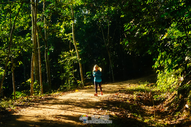 7 Things To Do In FRIM Kepong - Canopy Walkway, Jogging & Nature Trekking