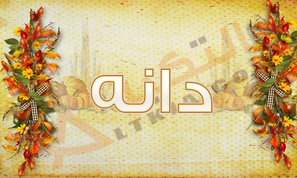 معنى أسم دانة وحكم تسميته فى الإسلام