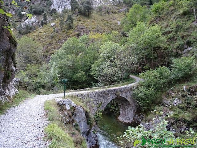 De Urdón a Tresviso: Puente sobre el río Urdón