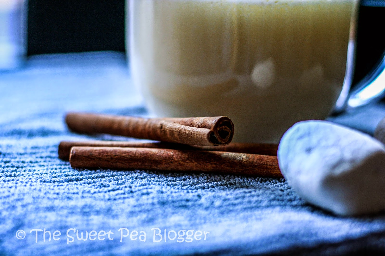 Creamy Vanilla Cinnamon Hot Chocolate