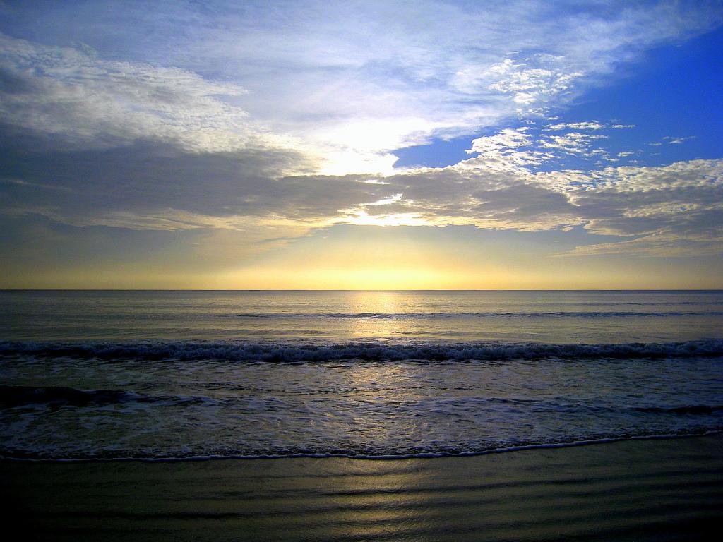 Plaža Myrtle v Južni Karolini Pregled Zadetki Vse-6495