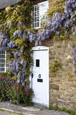 Breathtaking French farmhouse stone exterior with wisteria on Hello Lovely Studio