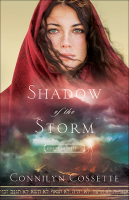 Featured Fiction: Shadow of the Storm by Connilyn Cossette