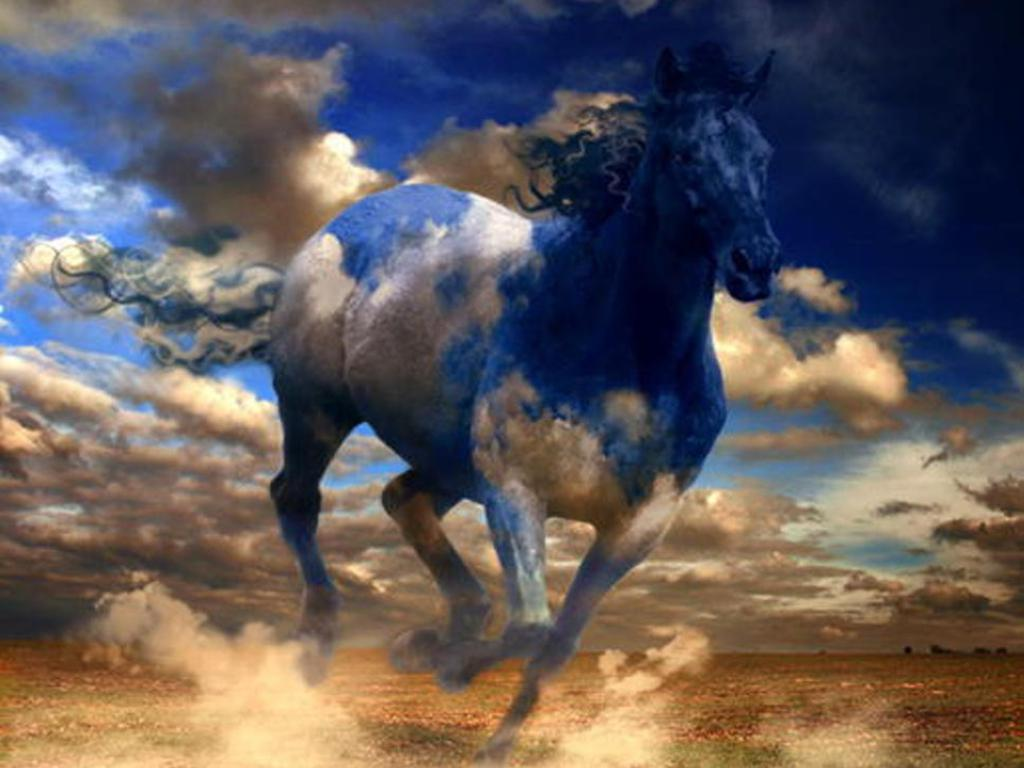Simple   Wallpaper Horse Colorful - 5  Photograph_756736.jpg