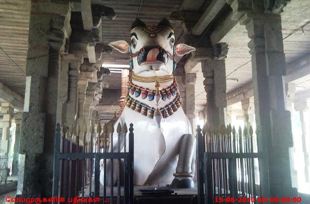 Thiruvidaimarudur Temple Nandhi