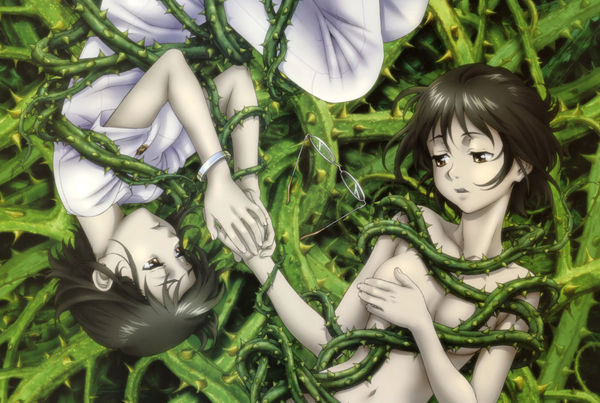 Ibara no Ou BD Subtitle Indonesia