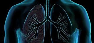 Αυτές είναι οι τροφές που καθαρίζουν τους πνεύμονες από τη νικοτίνη