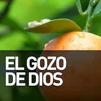 EL GOZO DE DIOS EN EL CRISTIANO SEGÚN LA BIBLIA