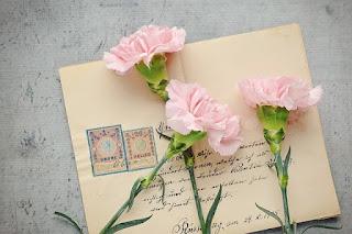 Cartas de perdon