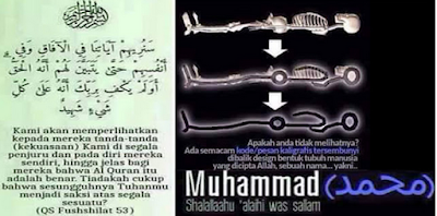 Ternyata Struktur Tulang Manusia Terlihat Menyerupai Nama Muhammad