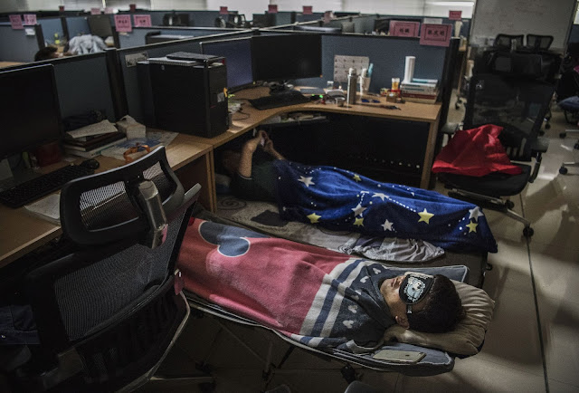 Huawei employees sleep in their cubicle in the research and development area after lunch at the Bantian campus.