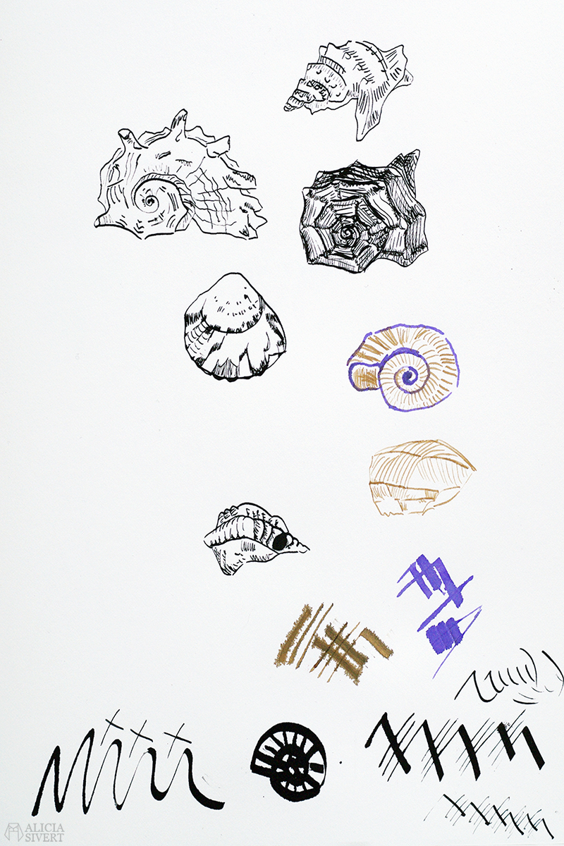 Teckningsutmaningen i juni, foto av Alicia Sivertsson. aliciasivert teckning teckningar teckna rita skiss skissa skapa skapande utmaning kreativitet skaparutmaning bloggutmaning månadsutmaning kreativ penna pennor stålpenna stålpennor fjäderpenna fjäderpennor bläck bläckhorn ink snäcka snäckor