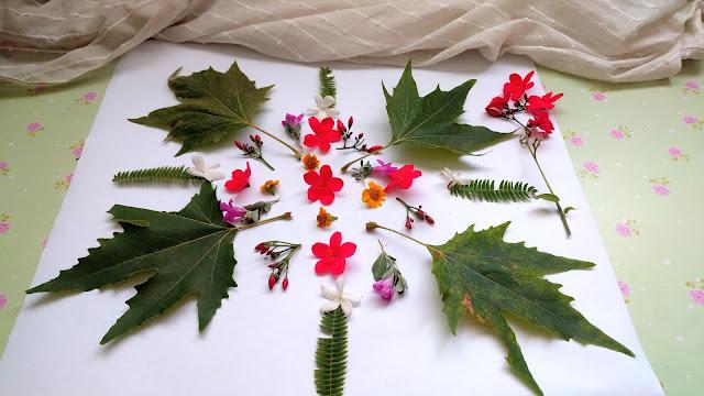 מה לעשות עם פרחים מיובשים - מנדלות מהטבע