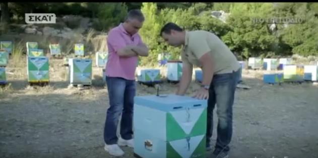 Ιστορίες Γης Μελισσοκομία VIDEO