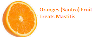Health Benefits of Oranges (Santra) Fruit Treats Mastitis