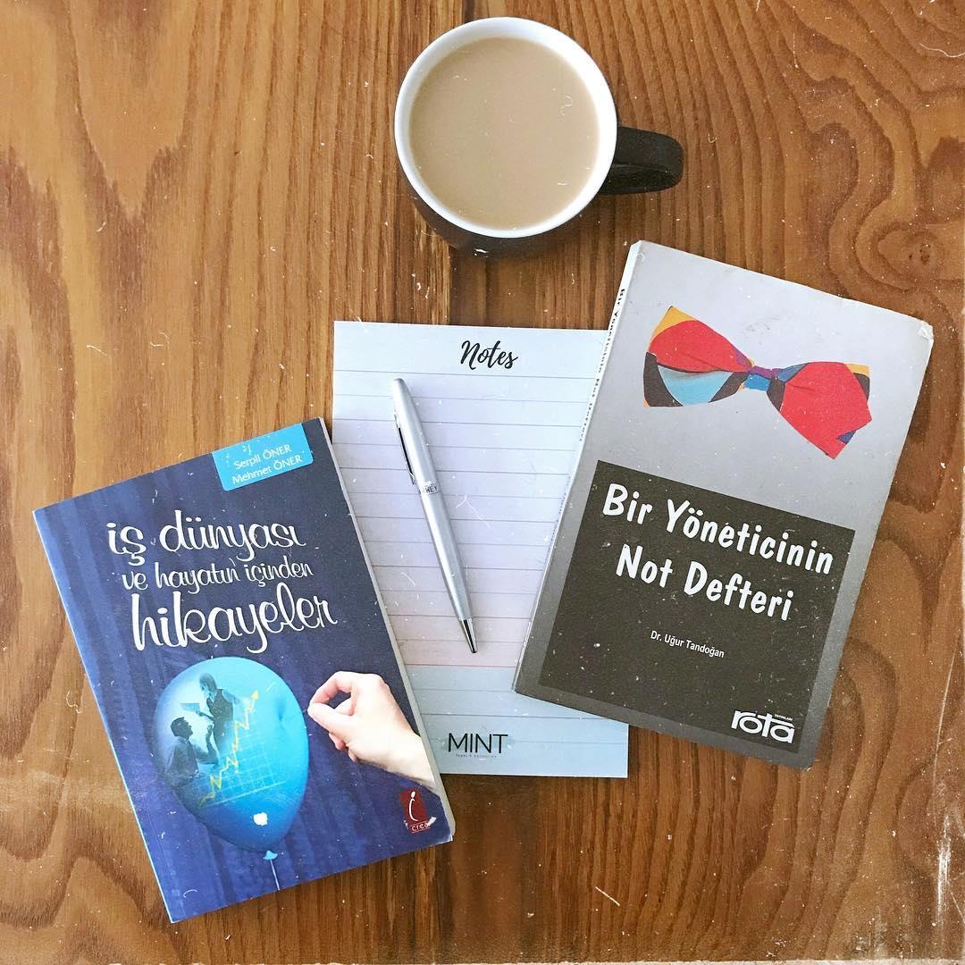 Is Hayatindan Deneyimleri Yansitan Kitaplar (4) (Kitap)
