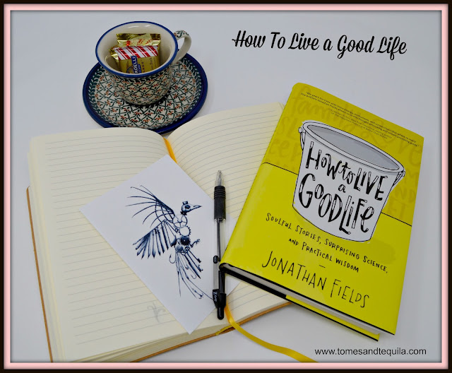 How to Live a Good Life by Jonathan Fields review from Tomes and Tequila Book Blog