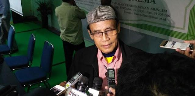 Dewan Pakar ICMI Pusat: MUI Tak Boleh Menyetujui Konsep Islam Nusantara