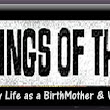 Musings of the Lame: Life as a Birthmother: A Slight Move Forward by New York State for Adoptees