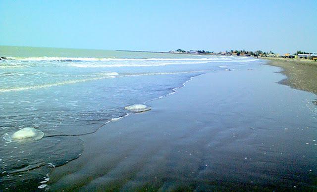 Pantai-Balongan-Indah-Destinasi-Wisata-Pantai-Yang-Eksotis-di-Indramayu
