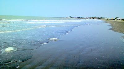 Pantai Balongan Indah Destinasi Wisata Pantai Yang Eksotis di Indramayu