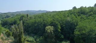 Vistas de los alrededores de Vinci desde la población.