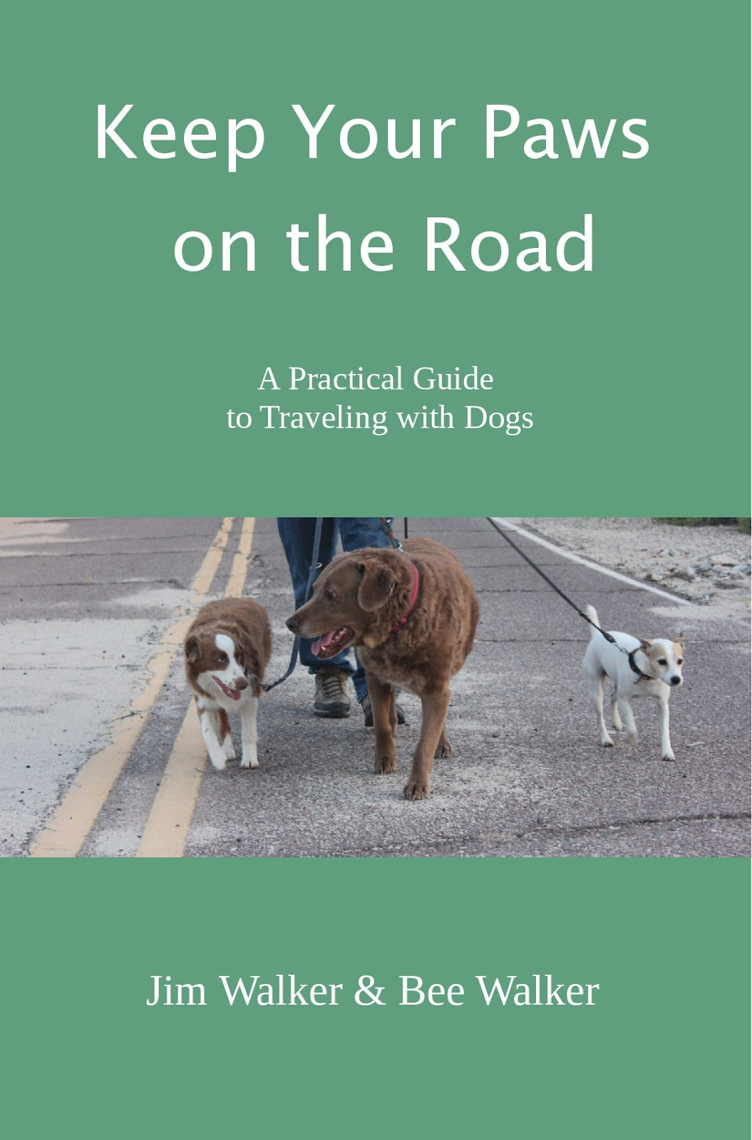 how to keep dog away from road