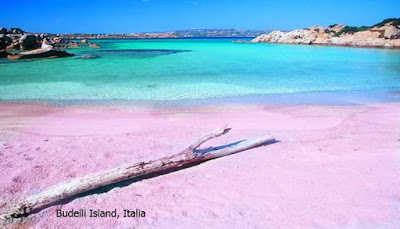 Pantai Pink Terindah Di Dunia Yang Dapat Anda Kunjungi  10 PANTAI PINK TERINDAH DI DUNIA YANG DAPAT ANDA KUNJUNGI