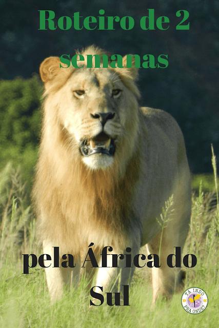 Roteiro de 2 semanas pela África do Sul
