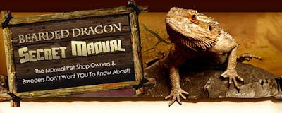 Bearded Dragon Secret Manual - Bearded Dragon Care - Bearded Dragon Guide