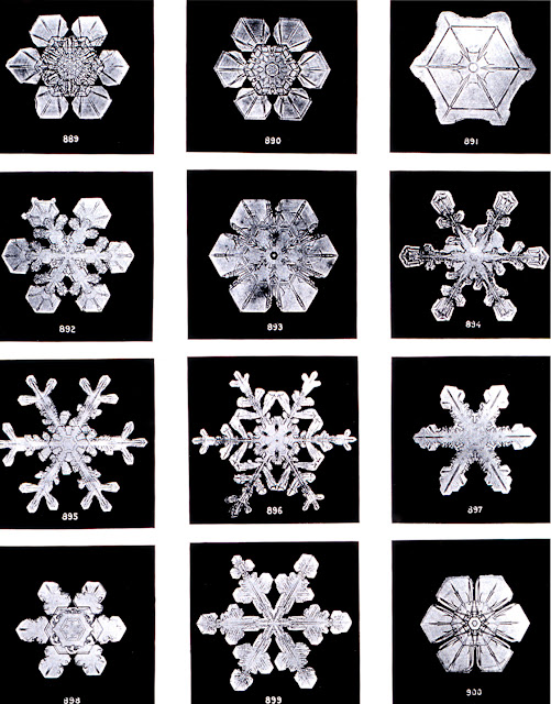 Snowflake photos by Wilson Bentley, circa 1902